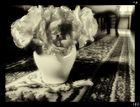 "Mostra online di Irene Ester Leo - ""Essence de Rose"" - 7."