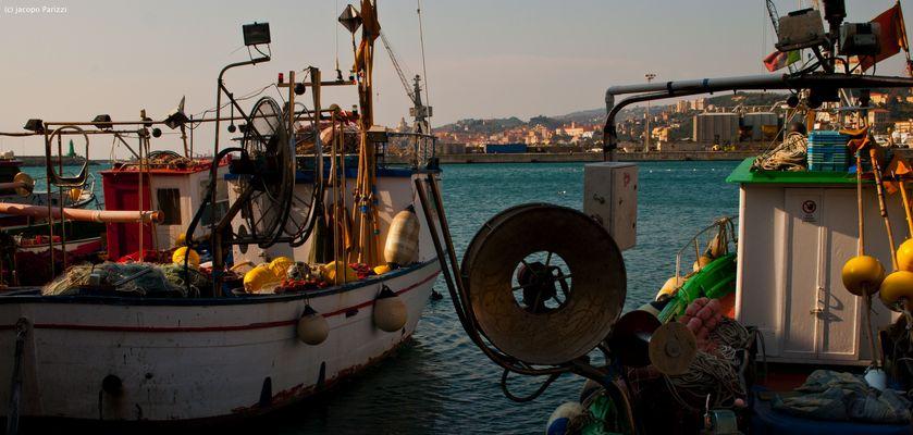 """Mostra online di Jacopo Parizzi """"Tra mare e città"""" - 5. Color della pesca"""