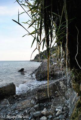 """Mostra online di Jacopo Parizzi """"Tra mare e città"""" - 8. Il mare sullo sfondo..."""