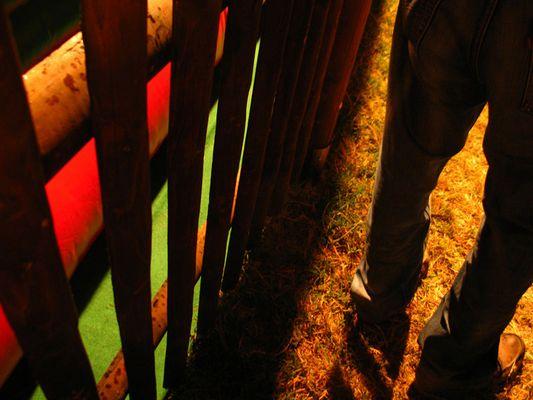 """Mostra online di Laura Faccenda: """"Zucchero filato"""" - 1- Cow boy"""
