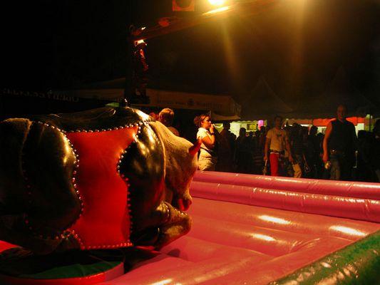 """Mostra online di Laura Faccenda: """"Zucchero filato"""" - 2 - Il toro meccanico"""