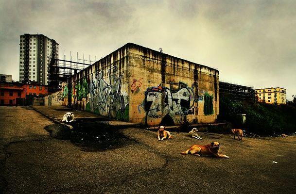 """Mostra online di Lino Rusciano """"Napoli-Est: Cityscapes"""" - 10."""