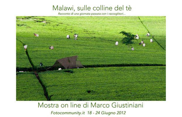 """Mostra online di Marco Giustiniani """"Malawi, sulle colline del tè"""""""