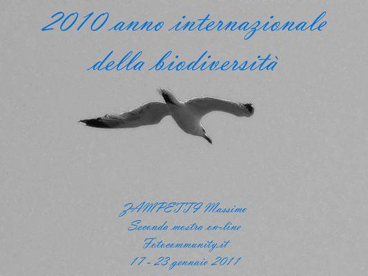 Mostra online di Massimo Zampetti: Biodiversità (Raccontare della)