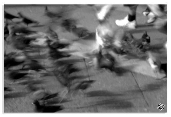"""Mostra online di Matteo Carbone: """"Venezia in 10 scatti"""" - 7."""