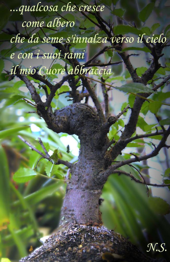 """Mostra online di Nadia Sacenti: """"Quando il cuore..."""" - 9. ... S'innalza verso il cielo"""
