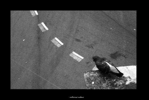 """Mostra online di Nicola Vecchione: """"Metaversi urbani"""" - 1."""