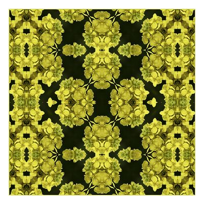 "Mostra online di Ombretta Ercolani ""Caleido Flowers"" – 3."