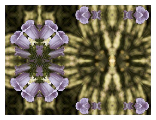 "Mostra online di Ombretta Ercolani ""Caleido Flowers"" – 4."