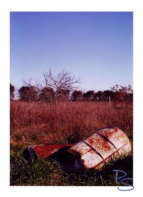 """Mostra online di Paola Stasi: """"Art&Nat (artificio e natura)"""" - 5. Contaminazioni pericolose"""