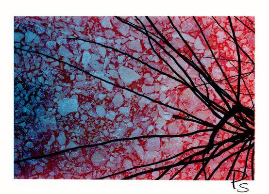 """Mostra online di Paola Stasi: """"Art&Nat (artificio e natura)"""" - 9. Contaminazioni pericolose2"""