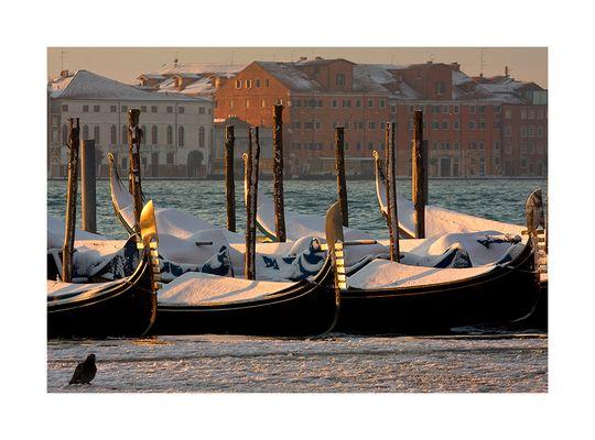 """Mostra online di Tommaso Forin """"Venezia e la neve"""" - 7."""