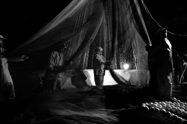 """Mostra online di Uta Theile """"L'arte della pesca nelle Cinque Terre"""" - 4. La rete viene issata"""