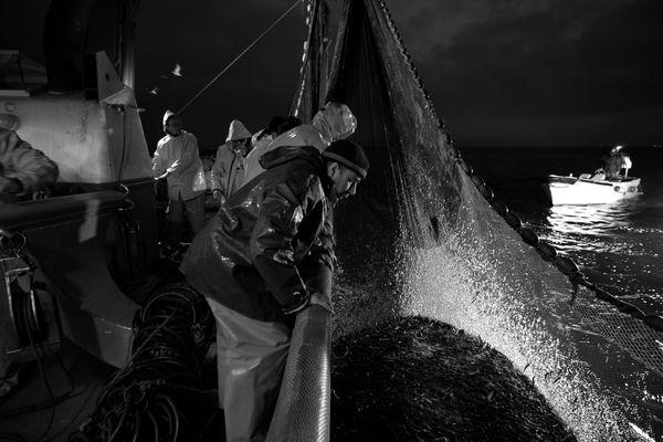 """Mostra online di Uta Theile """"L'arte della pesca nelle Cinque Terre"""" - 8. Soddisfazione"""