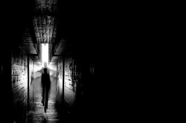 """Mostra online Lorenza Ceruti: """"Le effimere nella fortezza"""" - 9."""