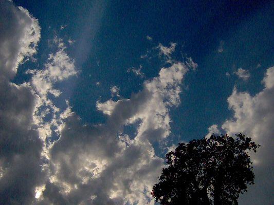 """Mostra online """"Ricordo di Ilaria Malerba"""" - 8. Cielo e terra"""