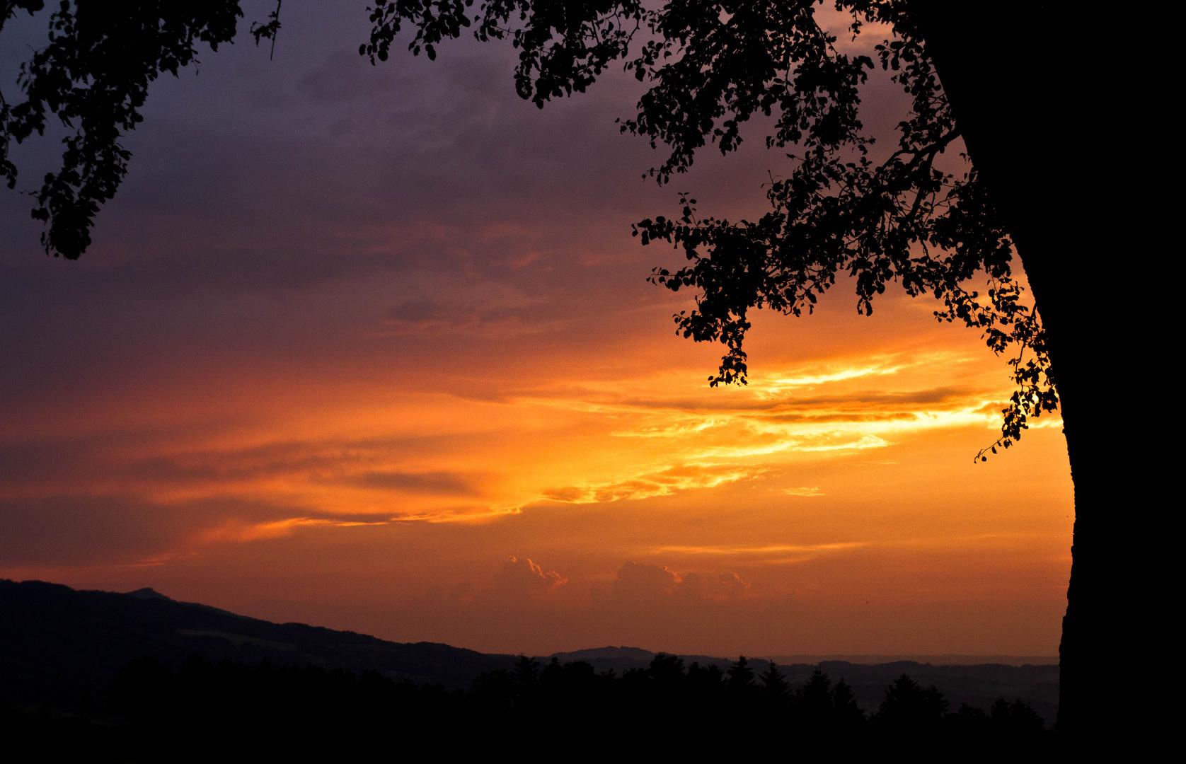 Mostviertlerer Sommersonnenuntergang