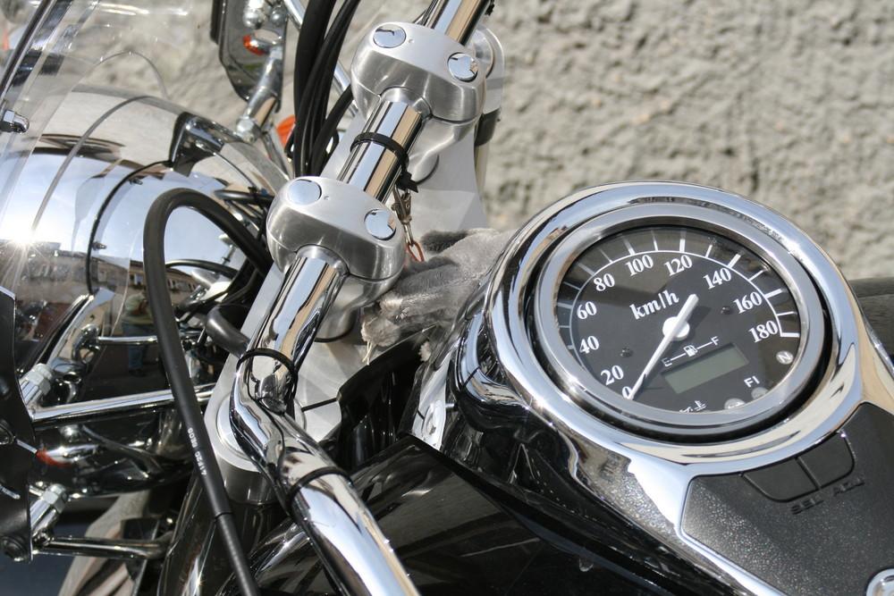 Motorrad ganz nah