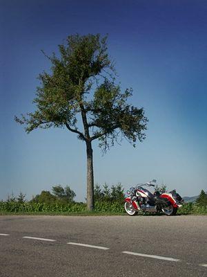 Motorrad mit Baum