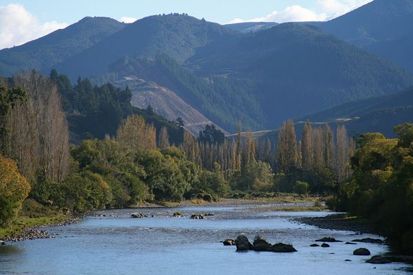 Motueka River Valley II