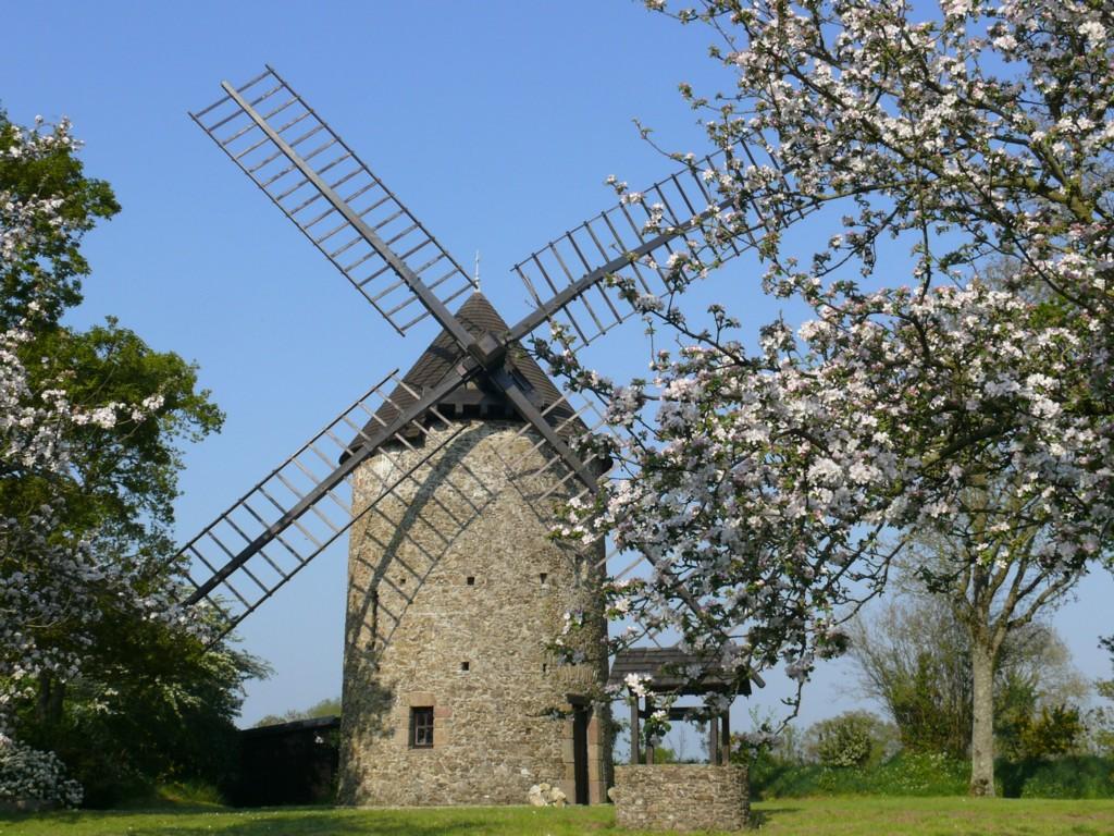 Moulin et Pommiers en fleurs