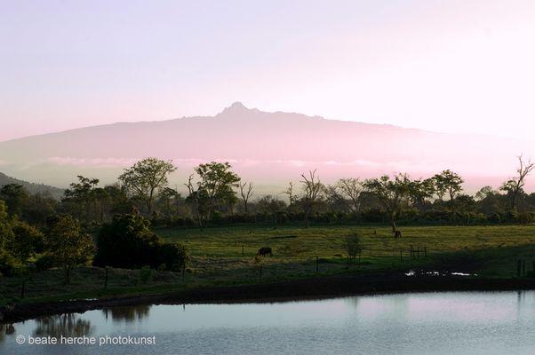 Mount Kenya am Morgen