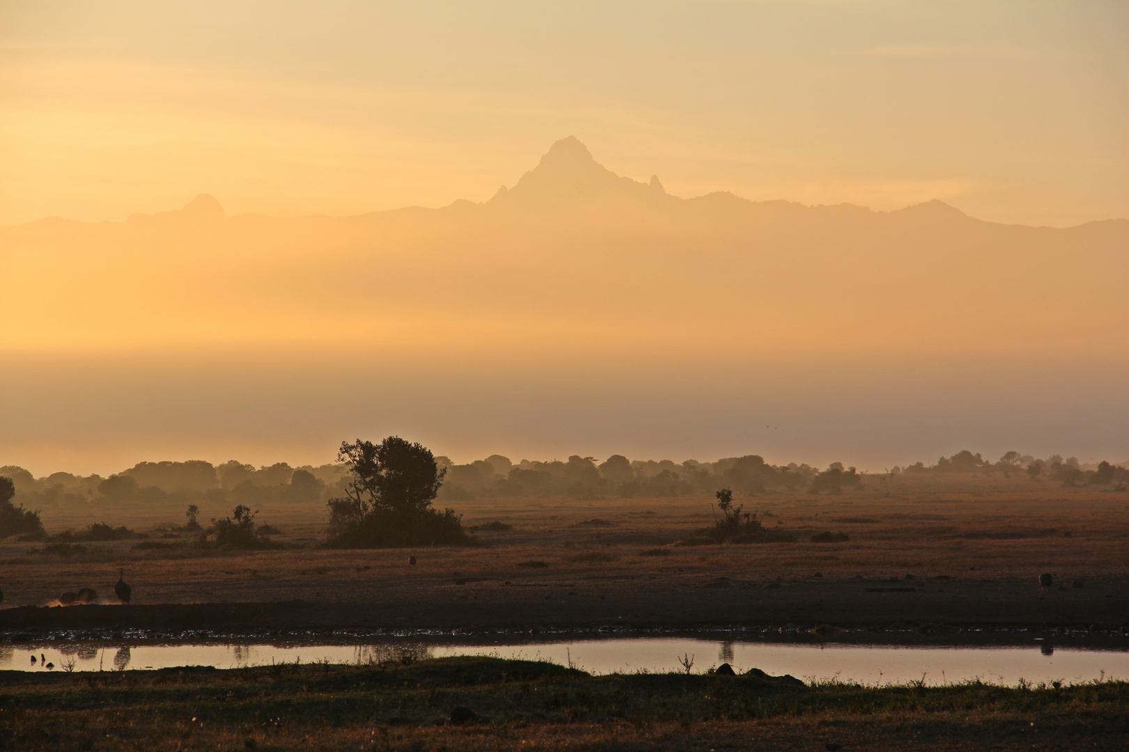 Mount Kenya Massiv ganz früh am Morgen.