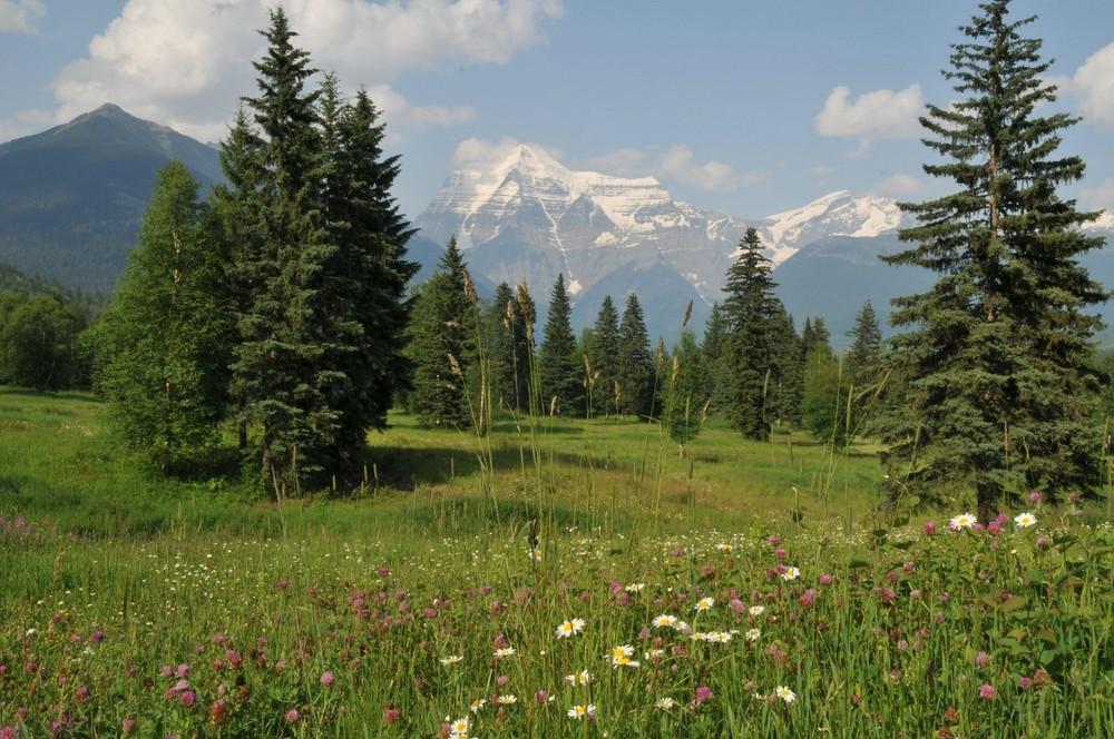 Mount Robson_2
