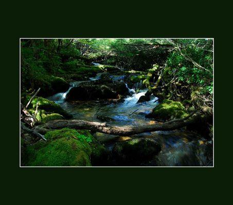 Mountain-river V