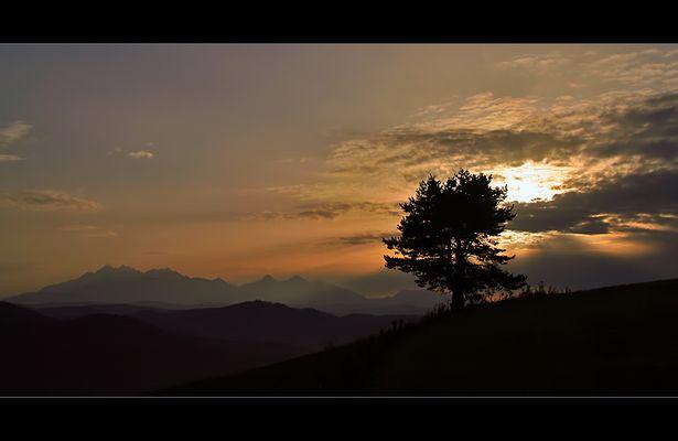 ° mountain sunset light °