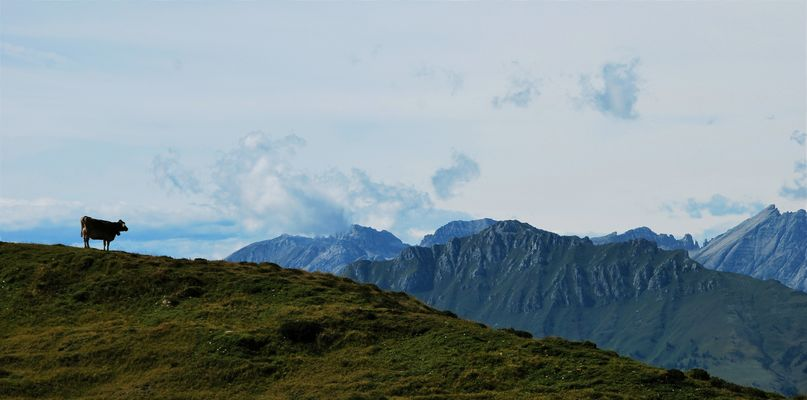 Mountains   - 41 -