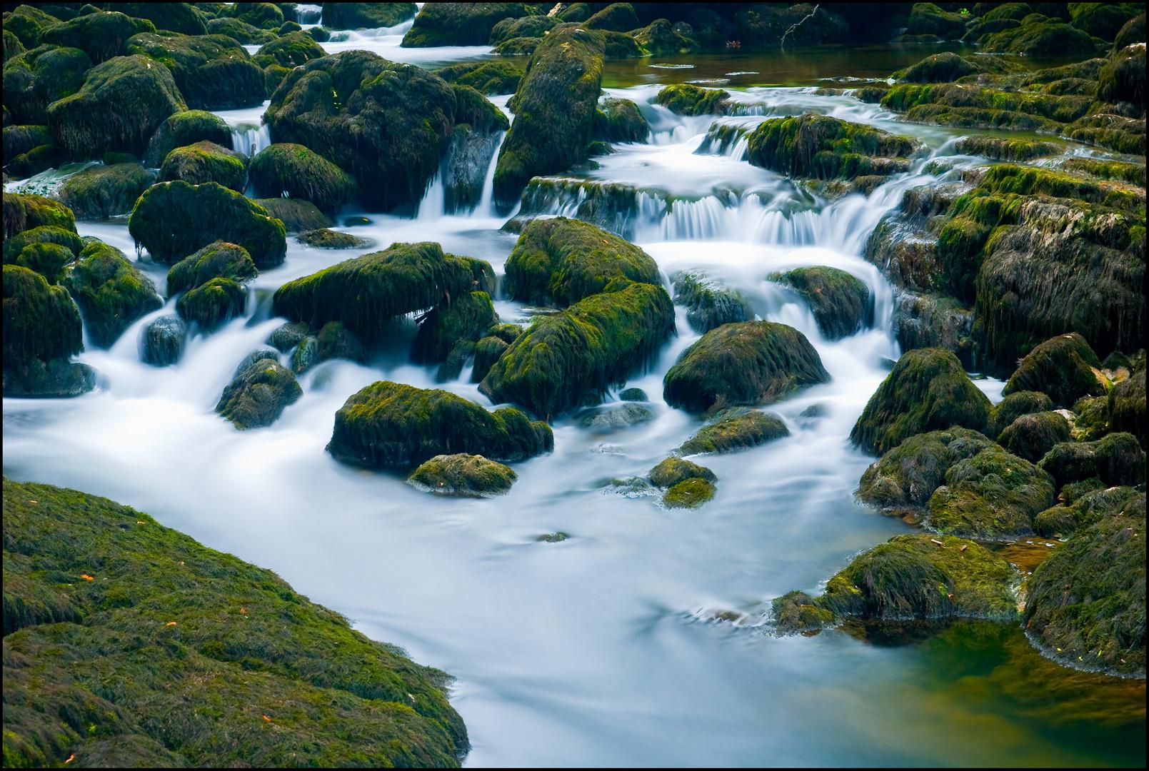 Mousse du Doubs