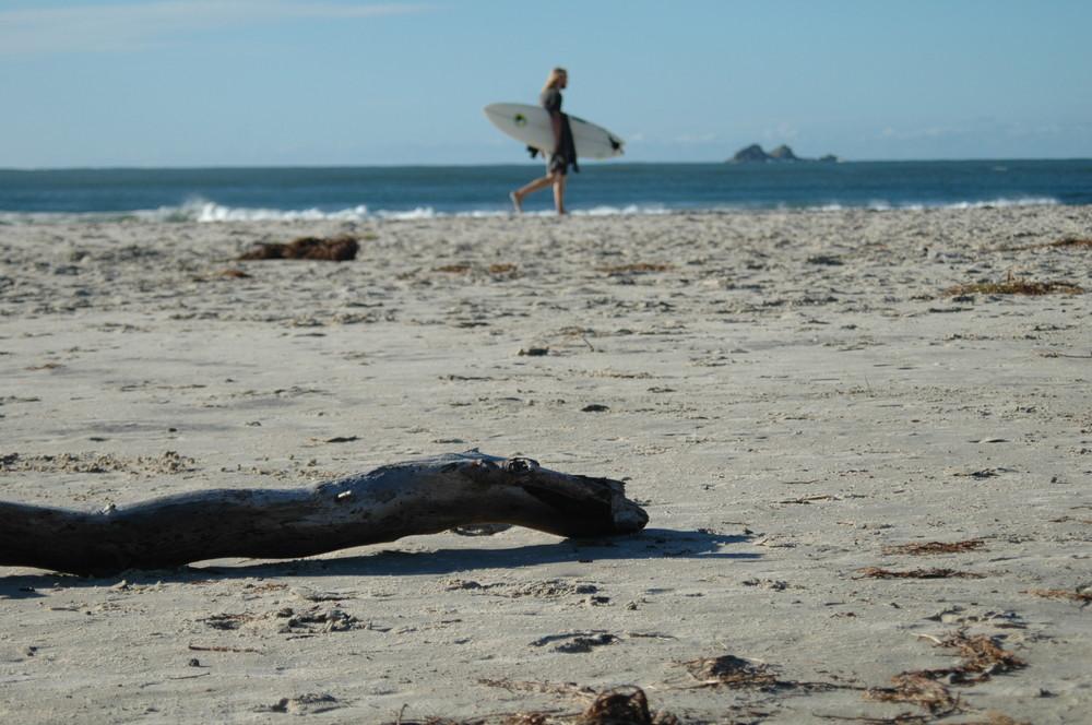 movement on the beach