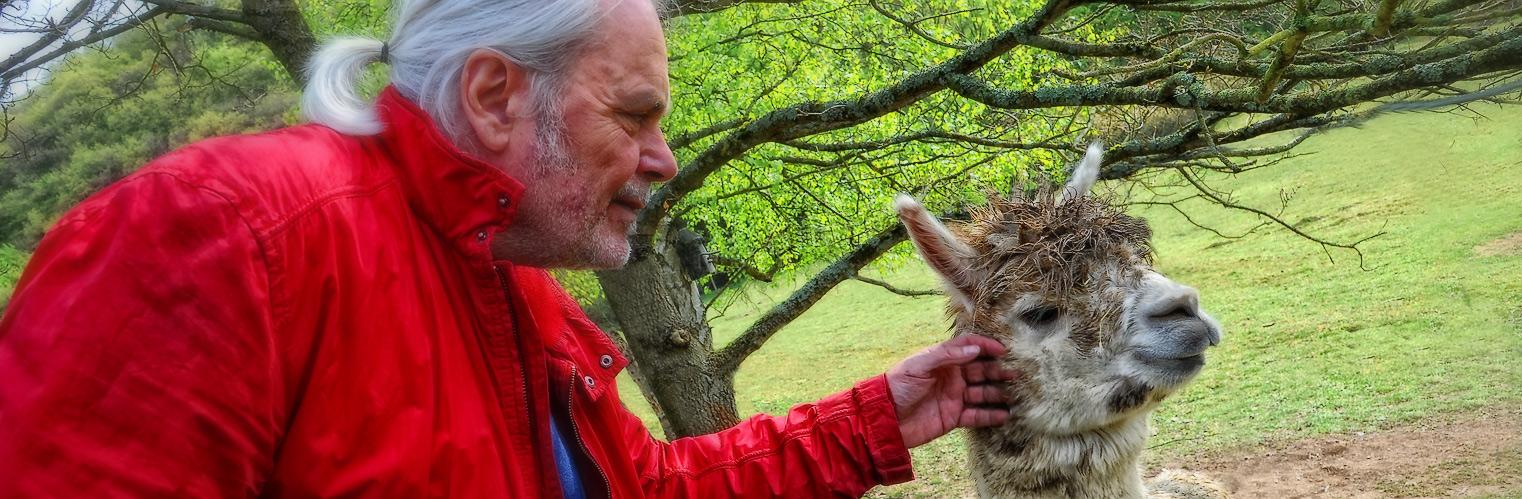 Mr. Fox überzeugt ein eher etwas schüchternes modell davon mit ihm auf