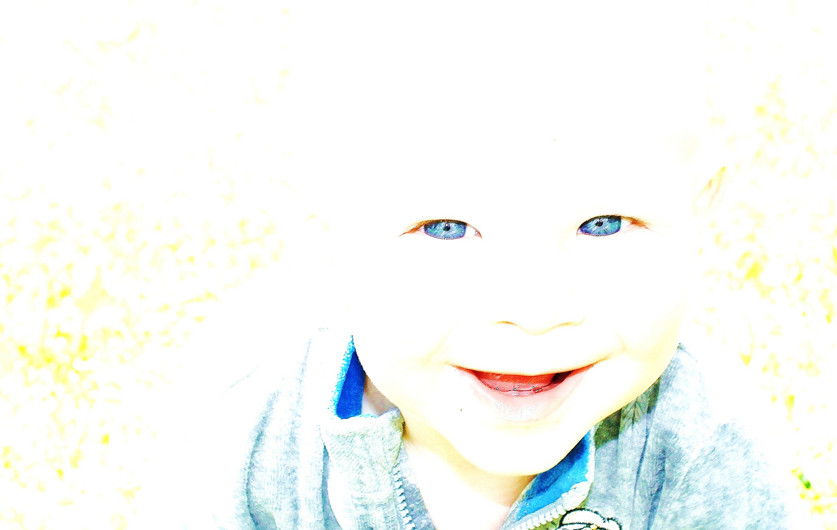 Mr. K.F.D / Blue Eyes