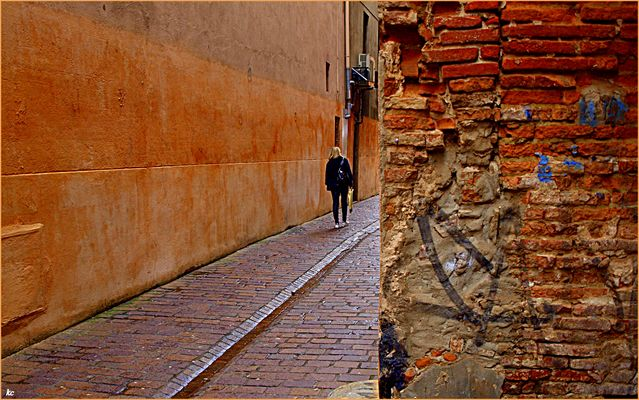 Mûrs de Toulouse