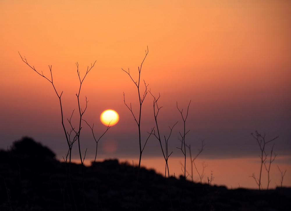 MT 4+ Sunset Malta