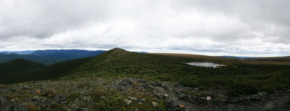 Mt Albert