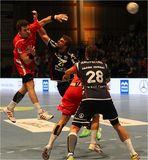 MT Melsungen vs. SG Flensburg-Handewitt 0184A 27.02.2013
