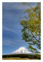 Mt.Fuji in May-3