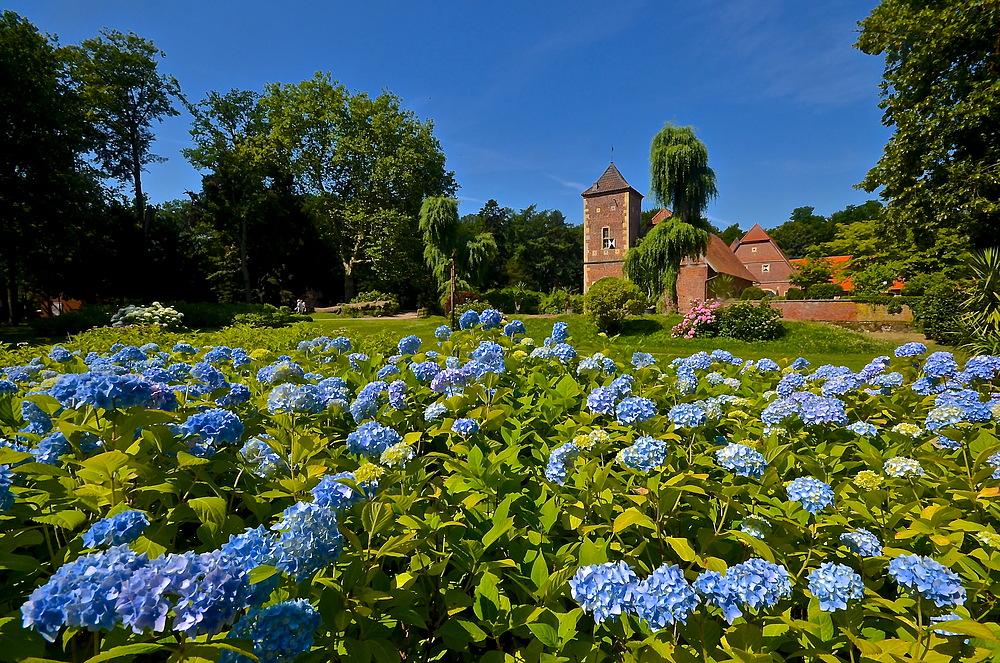 Mttwochsblümchen an der Burg Hülshoff