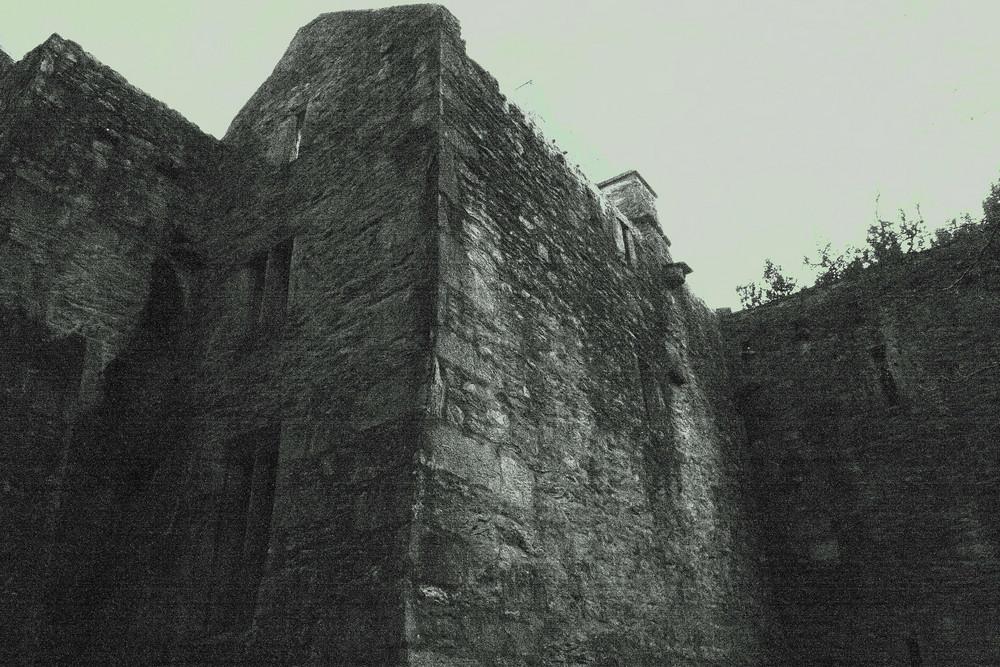 Muckross Abbey 2