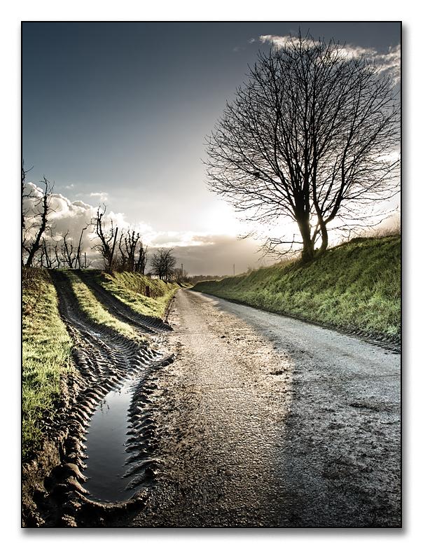 mud on the road