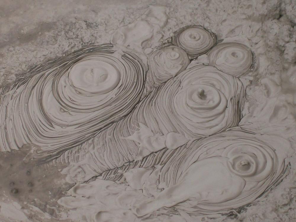 Mud Pool in Rotorua Neuseeland
