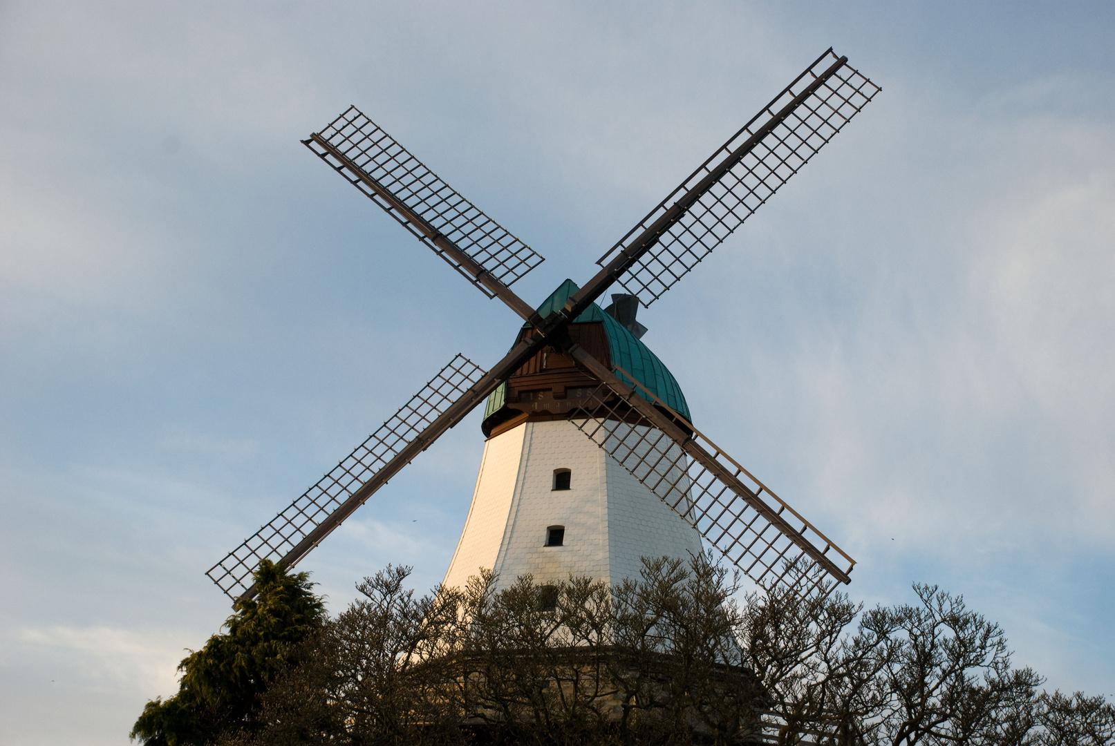 Mühle Amanda 2