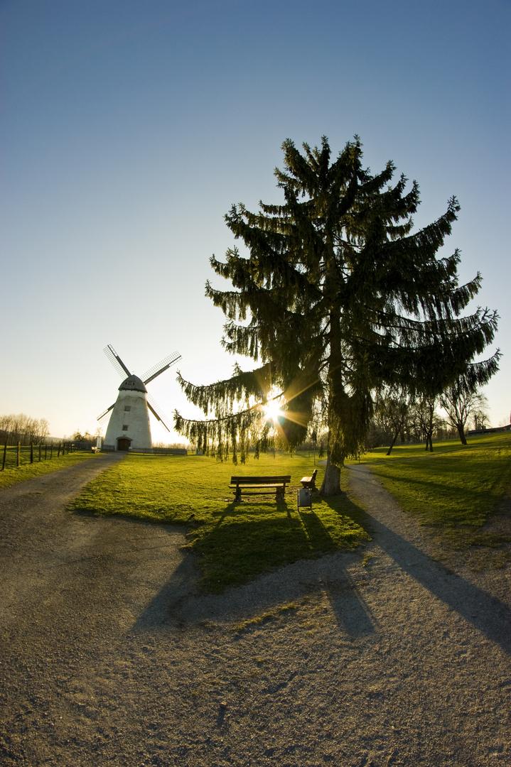 Mühle Beckum