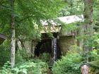 Mühle im Wald