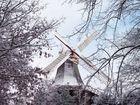 Mühle im Winterkleid