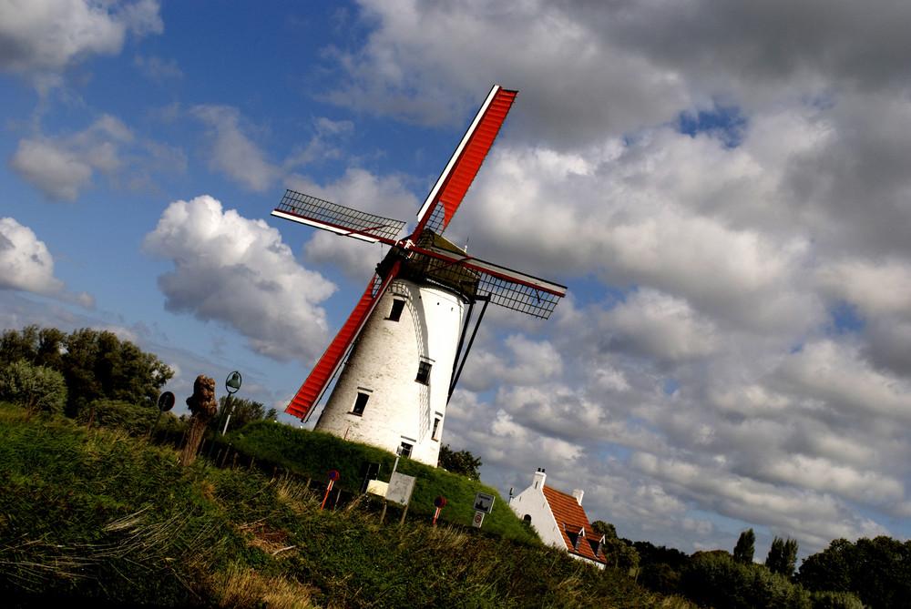 Mühle in Flandern