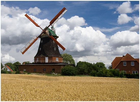 Mühle Neubukow